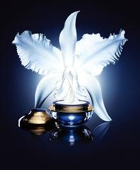[新品] 嬌蘭「新一代蘭鑽精萃再造霜」實現諾貝爾獎逆轉細胞生命關鍵, 淬鍊蘭花永恆不老能量,精品級乳霜完美演繹!