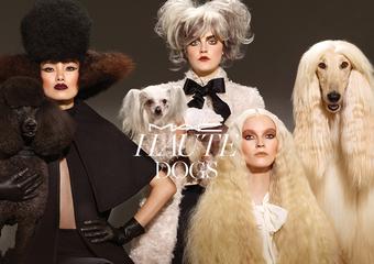 M.A.C【遛狗時尚秋妝系列】讓你和愛犬擁有「姊妹臉」