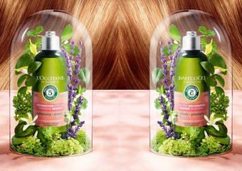 歐舒丹 - 源自精華油的神奇力量 再現秀髮最自然的美麗光采【草本精華油頭髮護理系列】新品8月23日上市