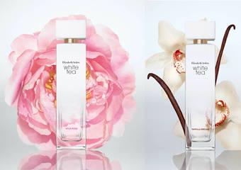伊麗莎白雅頓 - 細細品味白茶香.探索最單純美好的愉悅「白茶花綻野玫瑰香水、白茶溫煦香草蘭香水」新上市
