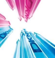 [限量] 紐約,充滿魔法般的夏季魅力 DKNY 2009 SUMMER【DKNY夏日限量男女對香】