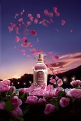 [新品] 2009 L'OCCITANE全新女香之作-五月玫瑰