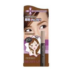 美眉染眉膏 BROWS UP CHAMAYU