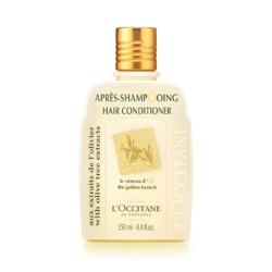 L'OCCITANE 歐舒丹 潤髮-橄欖潤髮乳 Daily Conditioner