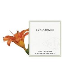 Van Cleef & Arpels 梵克雅寶 女性香氛-魅麗嫣紅百合 LYS CARMIN