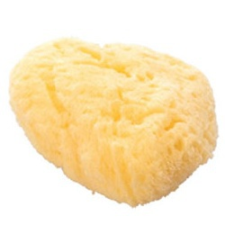 天然海棉  Kaimen Sponge