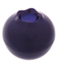 TONYMOLY 唇部保養-藍莓潤彩護唇膏