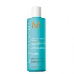 MOROCCANOIL 洗髮-優油保濕修復洗髮露 Moisture Repair Shampoo