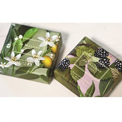 黑莓與月桂葉+橙花香氛皂系列