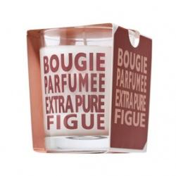COMPAGNIE DE PROVENCE 愛在普羅旺斯 居家香氛系列-無花果香水蠟燭