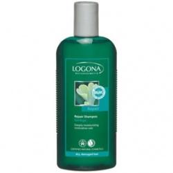 LOGONA 諾格那 植萃髮絲增色系列-銀杏光澤強化修護洗髮精