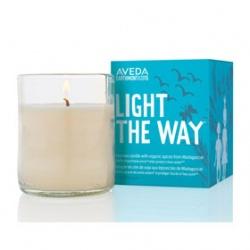 AVEDA 肯夢 純香蠟燭-2015地球月限定純香蠟燭 Light The WayTM Candle