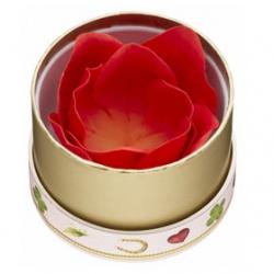 Les Merveilleuses LADUREE Cheek-玫瑰迷你腮紅 FACE COLOR ROSE LADUREE MINI