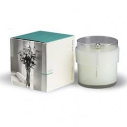 APOTHIA 情境香氛系列-CASA歡迎回家情境香氛蠟燭